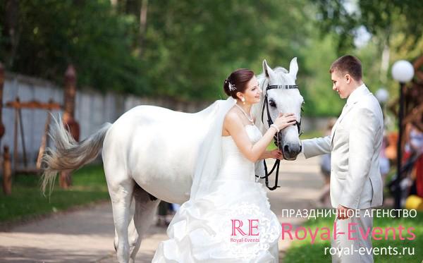 проведение свадьбы в подмосковье