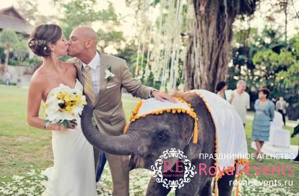 услуги организатора свадьбы в Тайланде